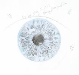 Blue iris by imargarita