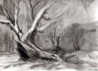 Mambray Creek #1 by Alecat