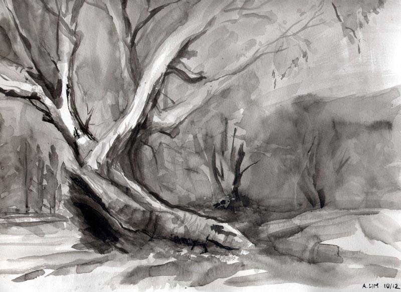 Mambray Creek #1