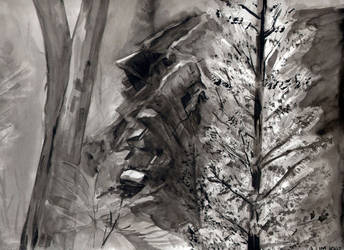 Mambray Creek #2 by Alecat