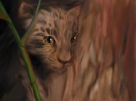 Tiger Cub, 'Hide and Seek' by Alecat