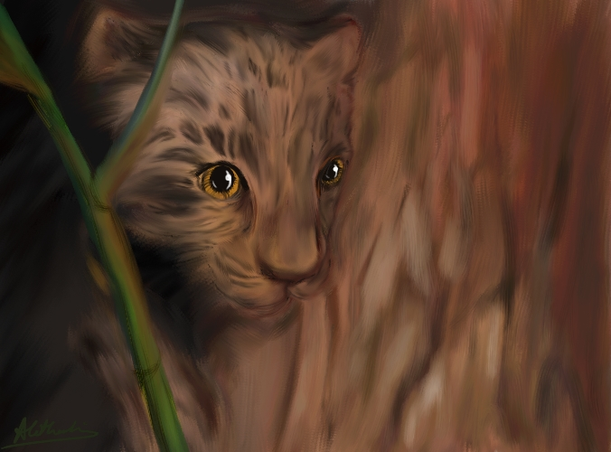 Tiger Cub, 'Hide and Seek'