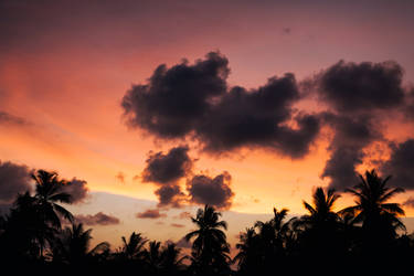 Tropical Sunset by insolitus85