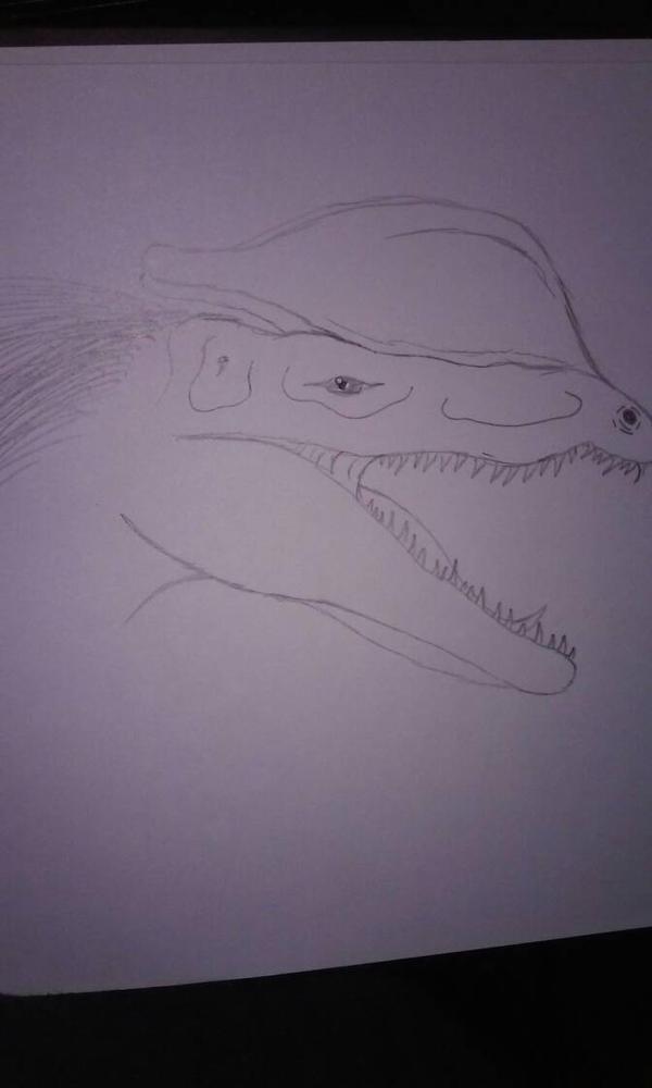 Dilophosaurus by ThekaijugodTKG
