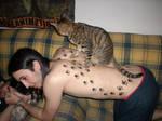 Dirty cat