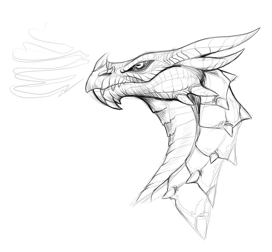 Skyrim Dragon Doodle By Windveil On DeviantArt