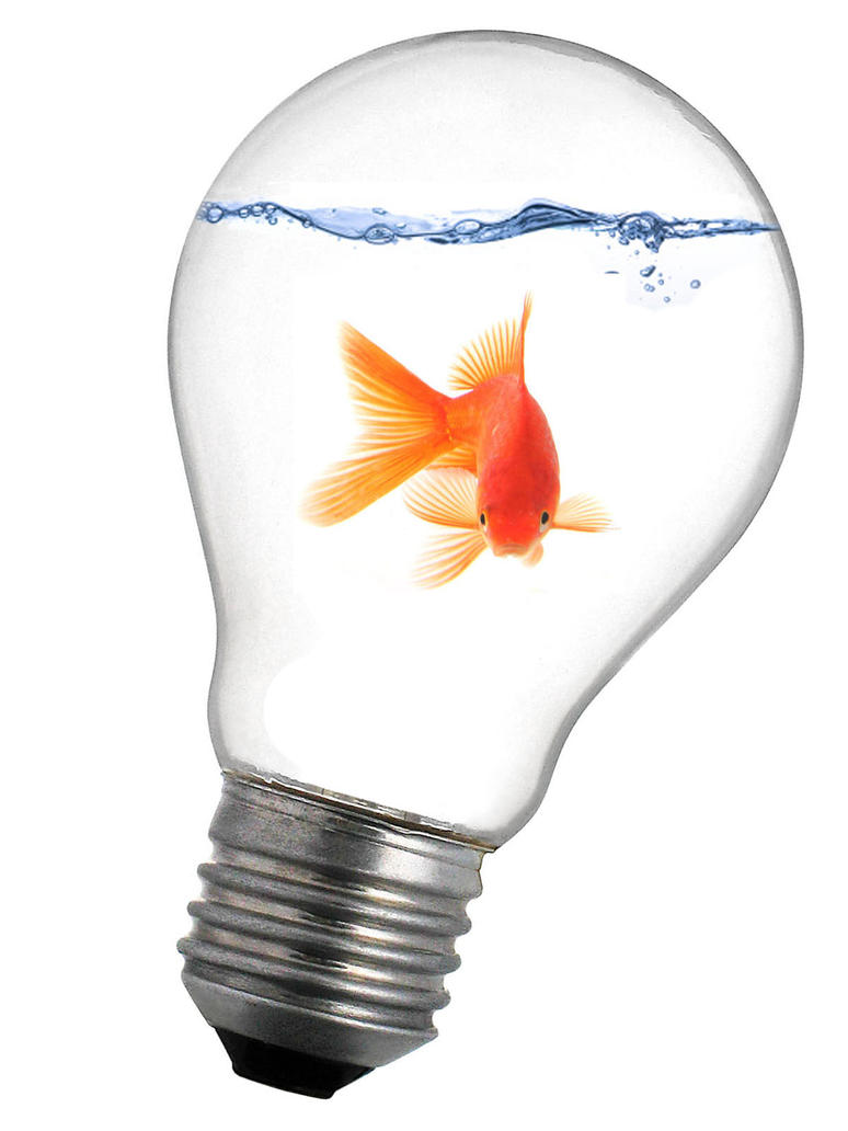 goldfish in lightbulb by pawnile