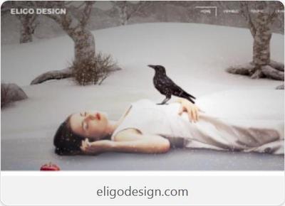 EligoDesign's Profile Picture