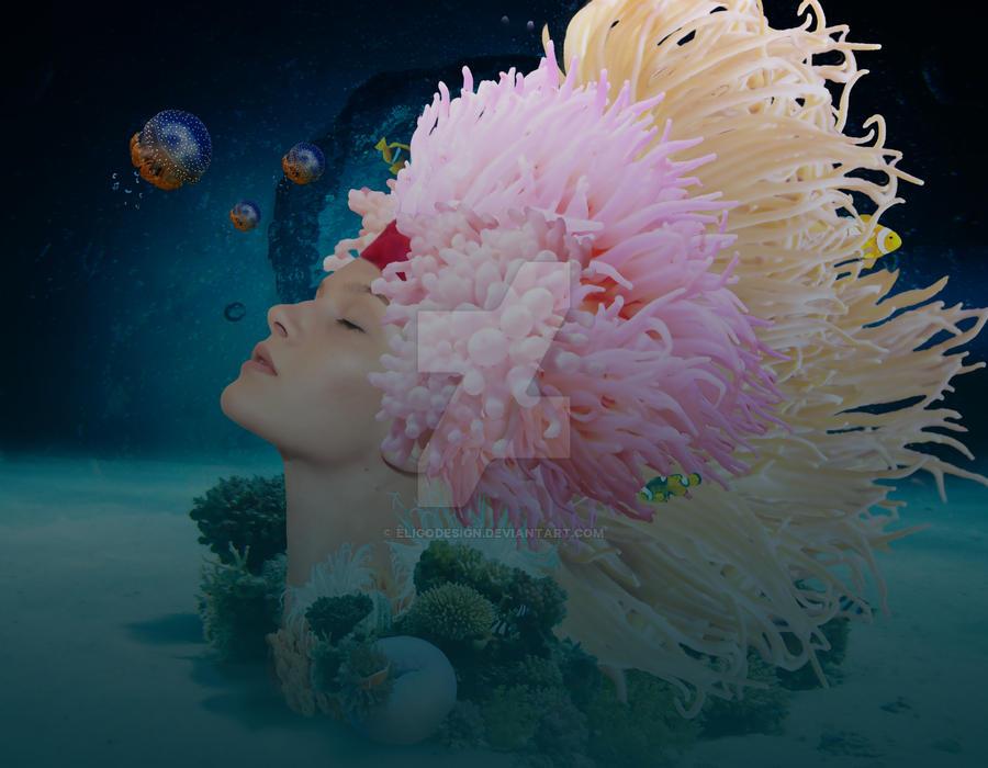 Sea Anemone by EligoDesign
