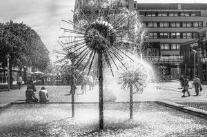 Dresden - Dandelion Fountain by pingallery