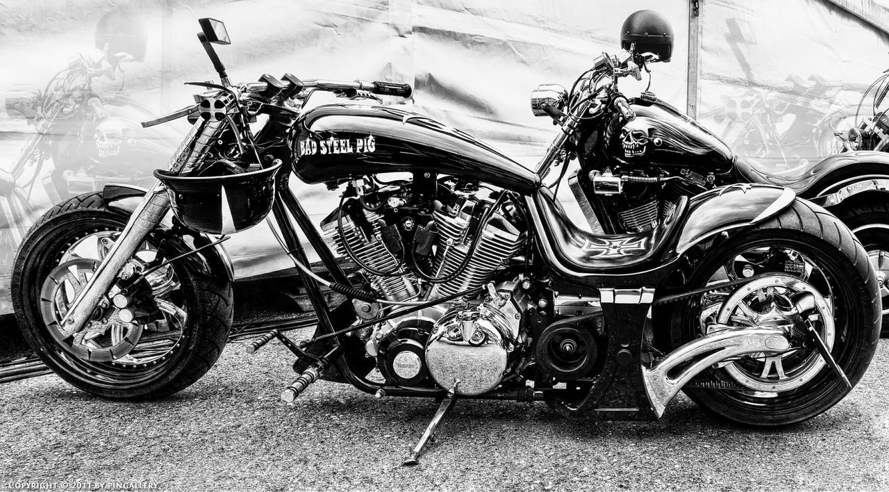 Harley Davidson by pingallery