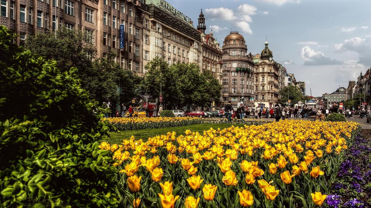 Prague - Vaclavske Namesti by pingallery
