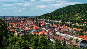 Look at the Old Town of Heidelberg