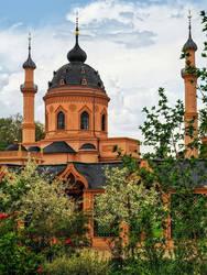 The Red Mosque at Schwetzingen Castle garden by pingallery
