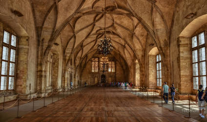 The Vladislav Hall of Prague Castle by pingallery