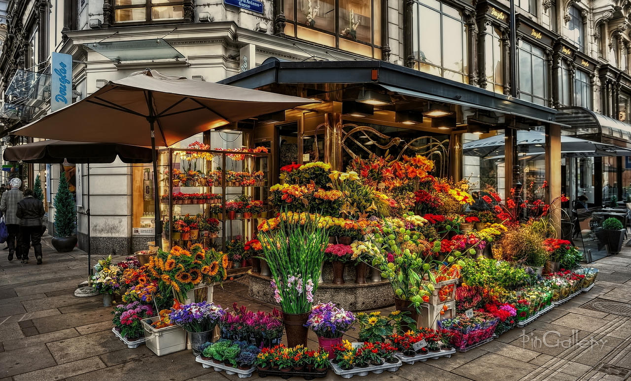 Beautiful flower shop by pingallery on deviantart for Designs east florist interior