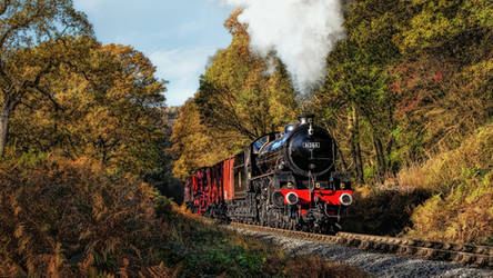 British Railway Steam Locomotive - B1 61264 by pingallery