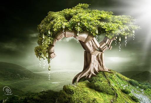 Tree of Pythagoras