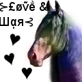 Friesian Love And War by Starcather9