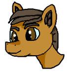 Random Pony