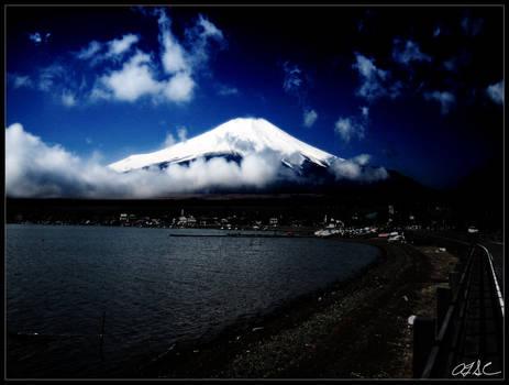 Fuji Digital