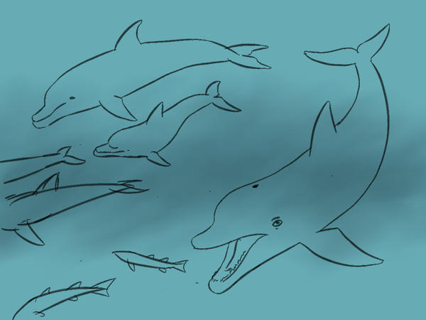 [Image: dolphins_by_strick67_d77e5z7-fullview.jp...HmL1c8mA0c]