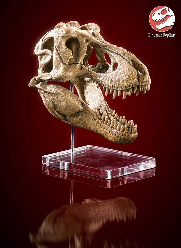 [Image: skull_rex_deviant_02b_by_strick67-dcnfj2o.jpg]