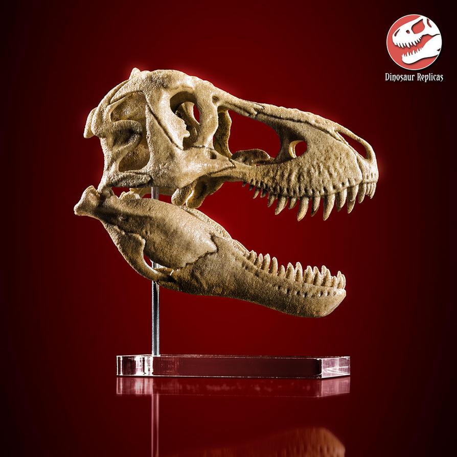 [Image: skull_rex_deviant_04a_by_strick67-dcnfjlq.jpg]