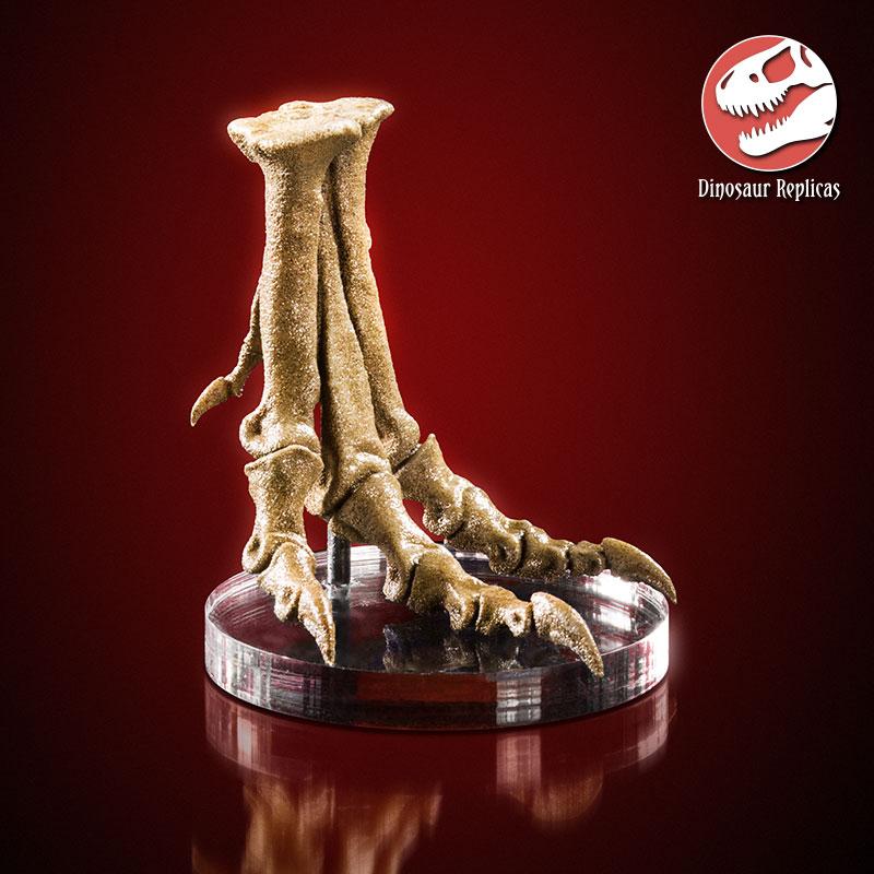 [Image: foot_rex_deviant_01a_by_strick67-dcnfjvu.jpg]