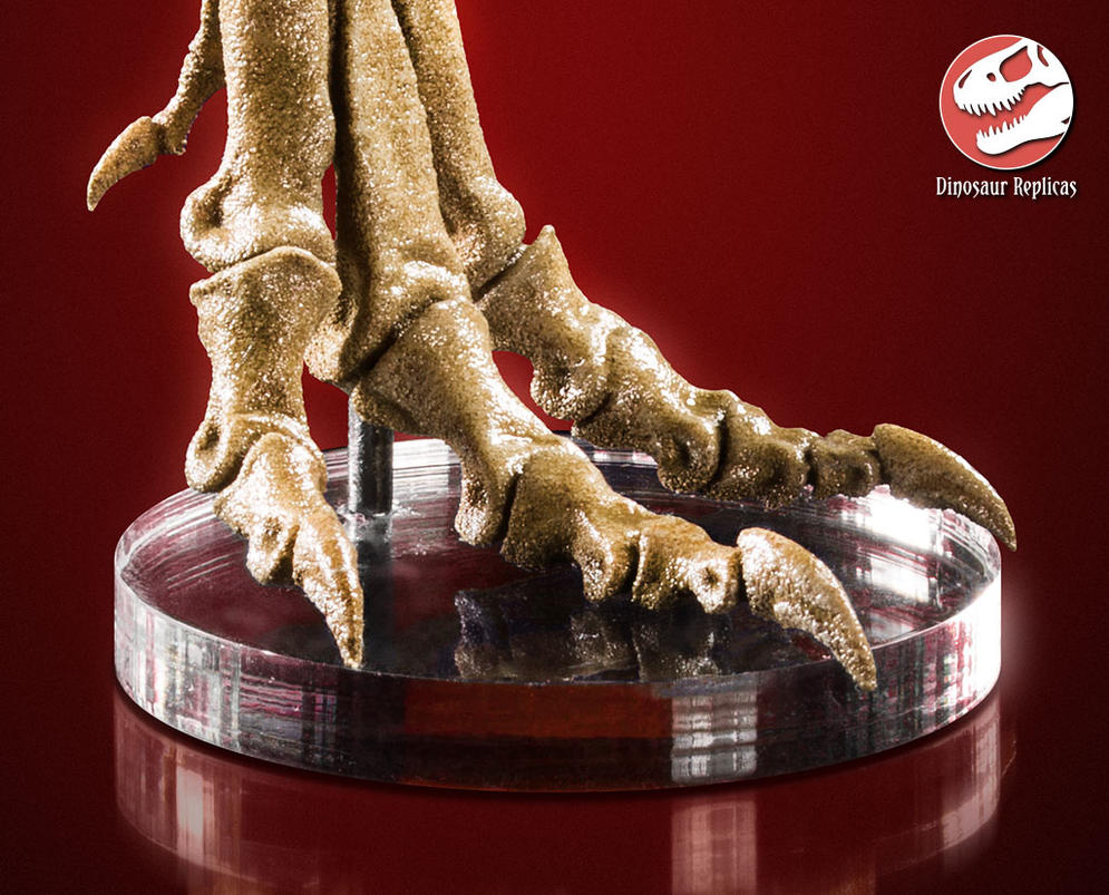[Image: claws_of_the_king____t_rex_foot_by_strick67-dcnfka2.jpg]
