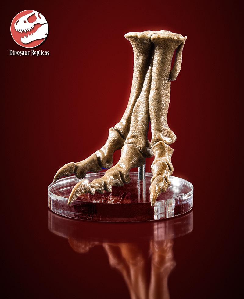 [Image: foot_rex_deviant_03a_by_strick67-dcnfl1d.jpg]