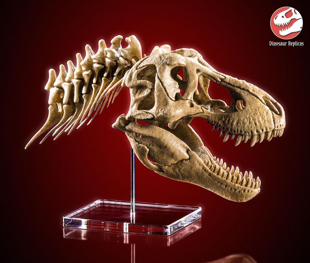 [Image: neckskull_rex_deviant_02a_by_strick67-dcnr8f7.jpg]