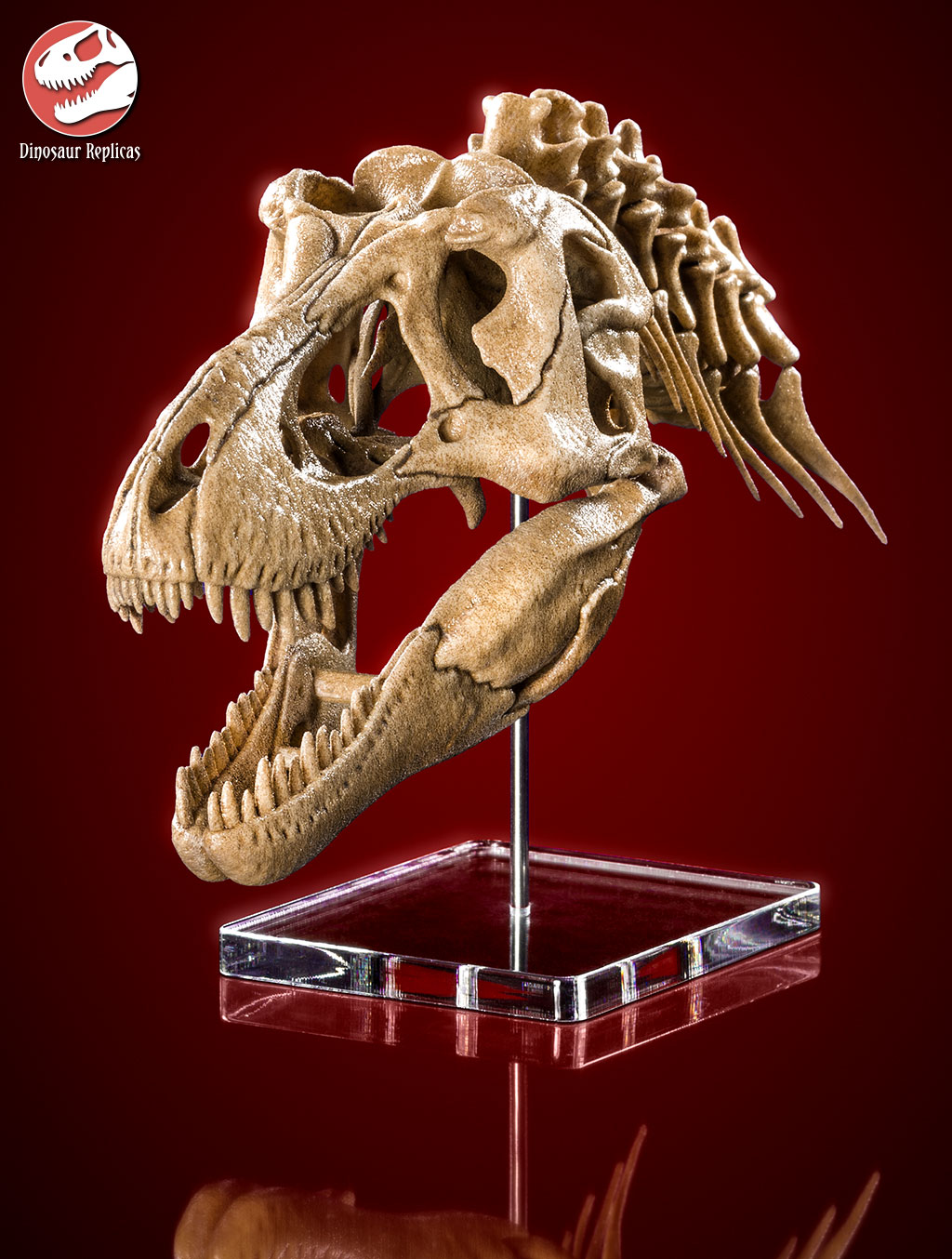 [Image: neckskull_rex_deviant_04a_by_strick67-dcnr9bb.jpg]