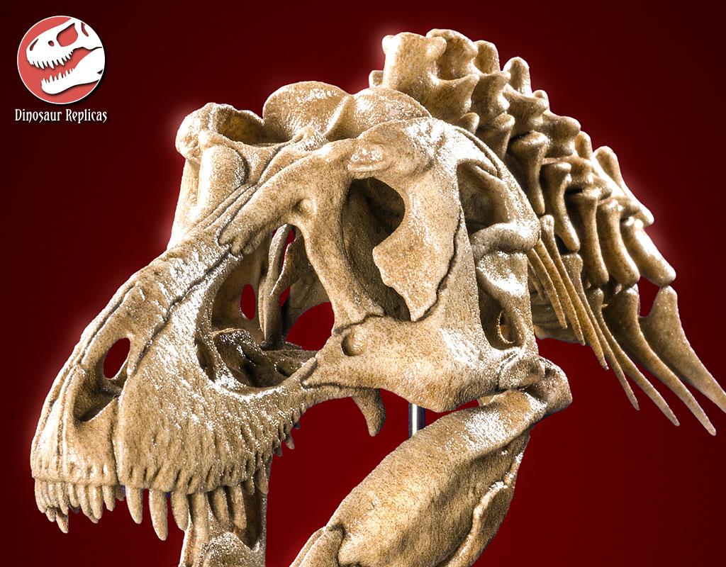 [Image: neckskull_rex_deviant_04b_by_strick67-dcnr9zg.jpg]