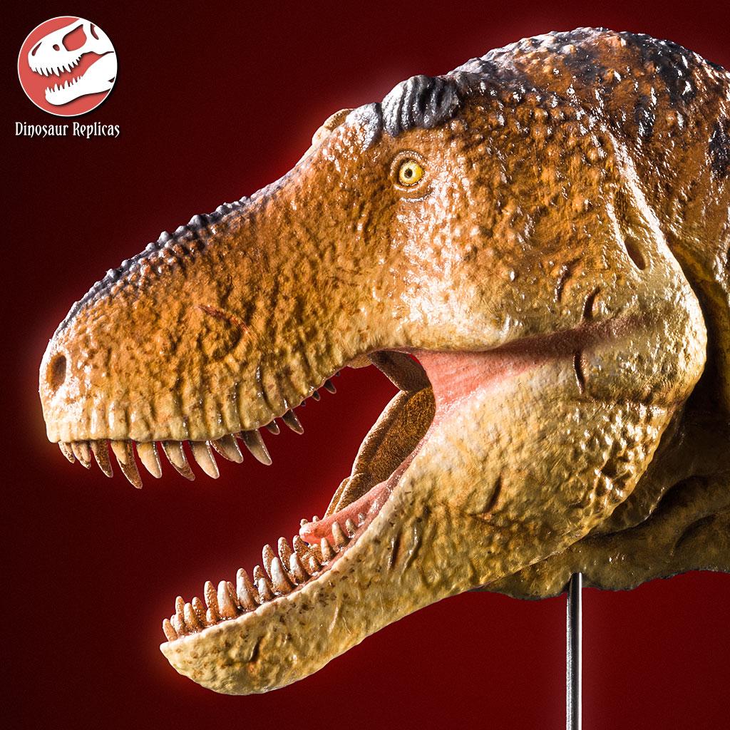 [Image: hh_flesh_rex_photo_71b_by_strick67-dco2g3f.jpg]