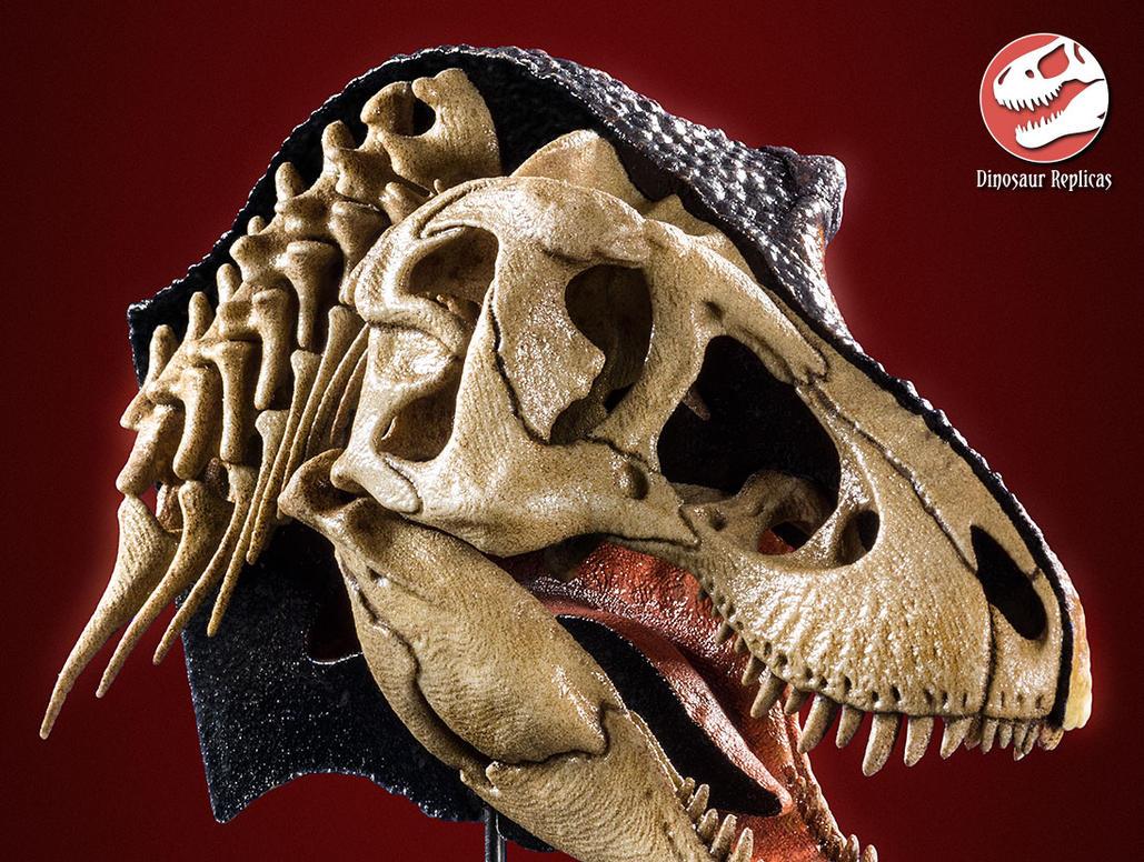 [Image: hh_bone_rex_photo_19b_by_strick67-dco2grh.jpg]