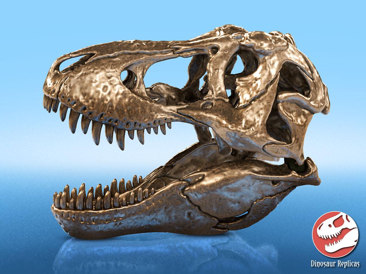 [Image: bronze_rex_deviantart_02_by_strick67-dcofun4.jpg]