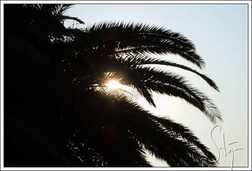 Sunrise in Scario by axlar