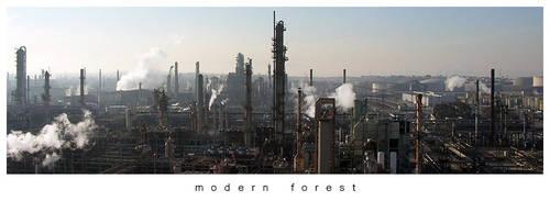Modern Forest by axlar