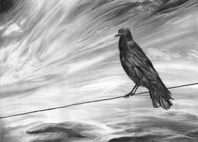 The Raven by corelila