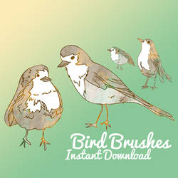 Bird Brushes by corelila