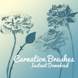 Carnation Brushes