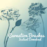 Carnation Brushes