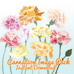 Carnation Image Pack by corelila