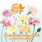 Carnation Image Pack