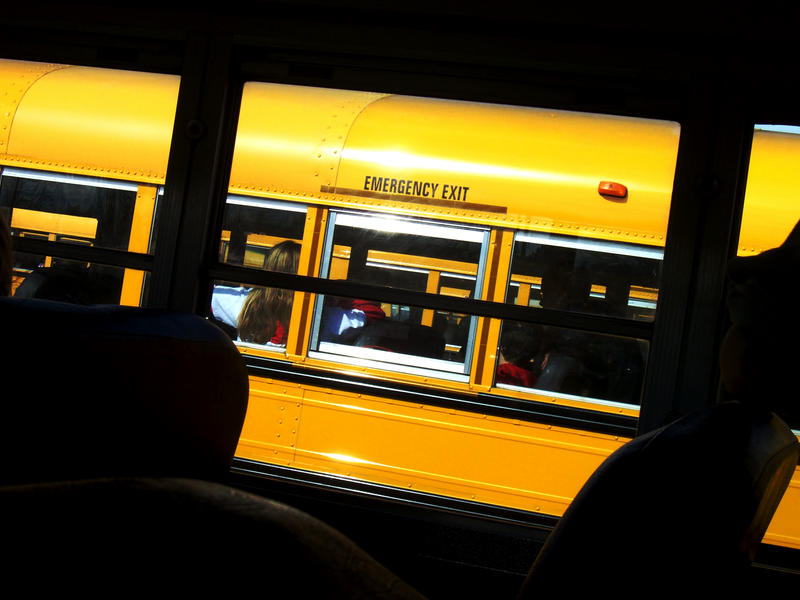 School Bus Blues Or Yellows by corelila
