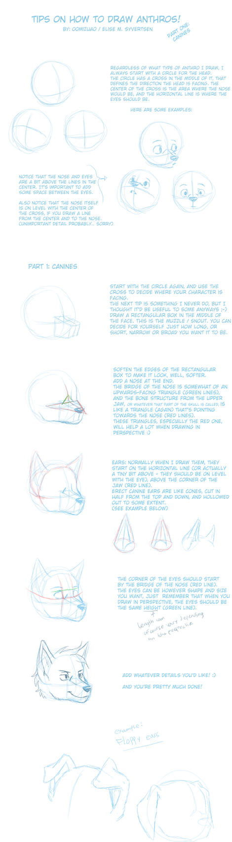 anthro drawing tips - canines by oomizuao