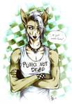 Seth - punks not dead