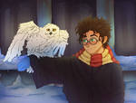 Harry Potter with Hedwig during wintertime