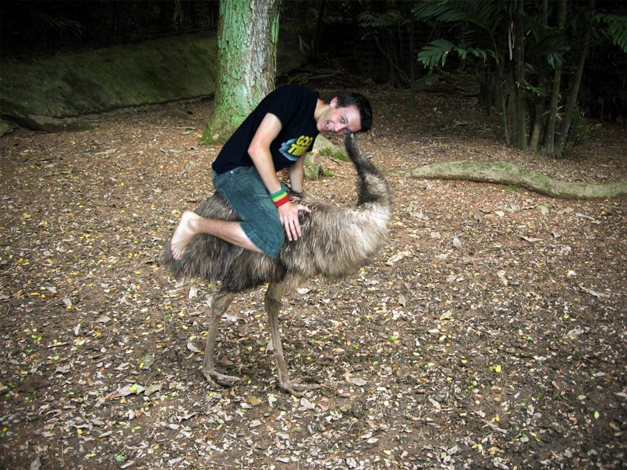 We Ride Emus in Australia by rhysie21
